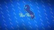 Blue Horse【店舗スタイル】
